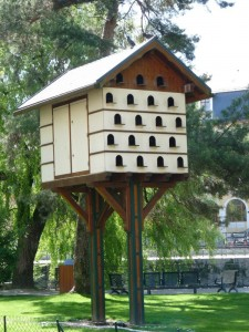 maison des oiseaux