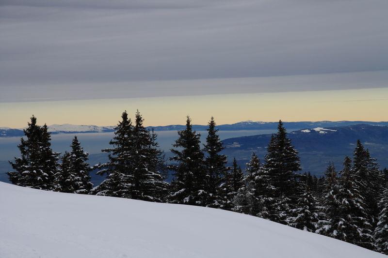 Fin d'après midi en Montagne
