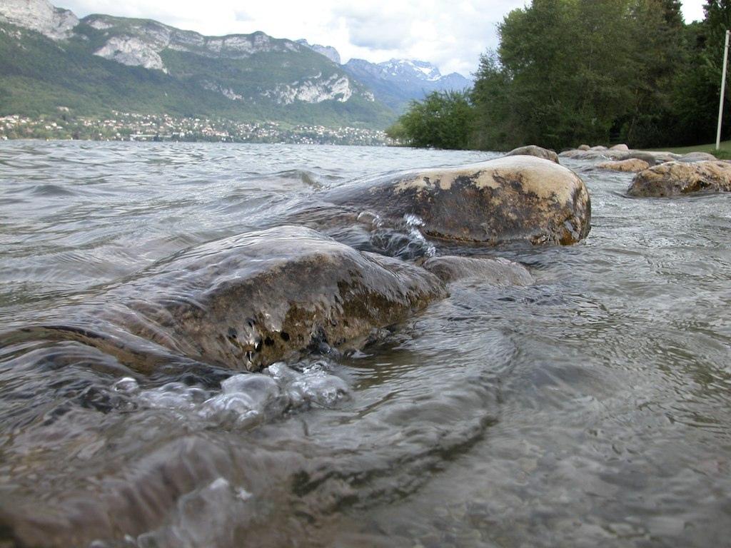 vaguelettes sur le bord du lac