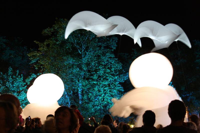 noctibules 2010 Annecy