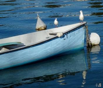 annecy, détail au bord du lac